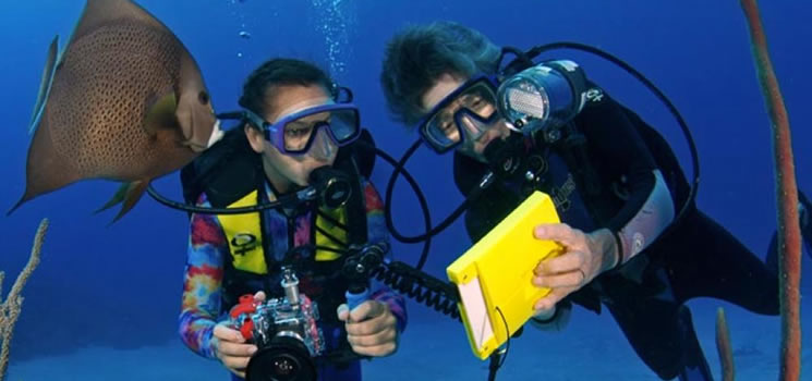 Courses - Underwater Videography