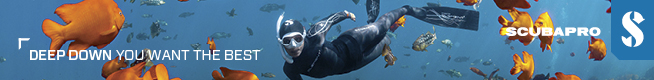 Subgear Free Diving – 728 x 90