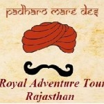 Profile picture of Royal Adventure Tours