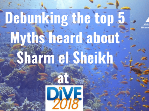 Debunking the top 5 myths heard about Sharm el Sheikh at DIVE 2018