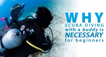 Why-Scuba-Diving-with-a-Buddy-Is-Necessary-for-Beginners_fb_v1.jpg
